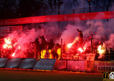 15/16 – Sachsenpokal – Viertelfinale – VfB Auerbach vs. SG Dynamo Dresden