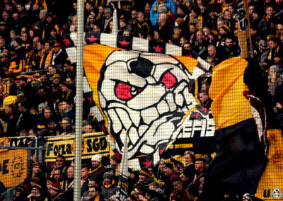 16/17 – 14 – SG Dynamo Dresden vs. VfL Bochum